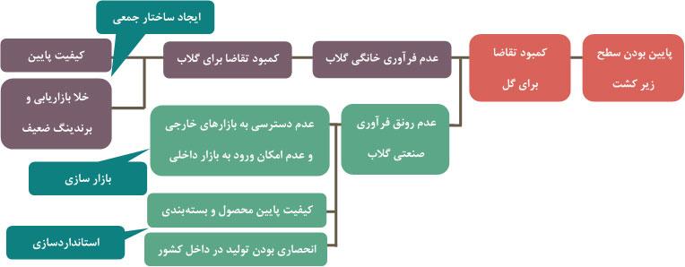 شکل 5- سیاستهای توسعه زنجیره گل محمدی برای رقابت با رقبای داخلی