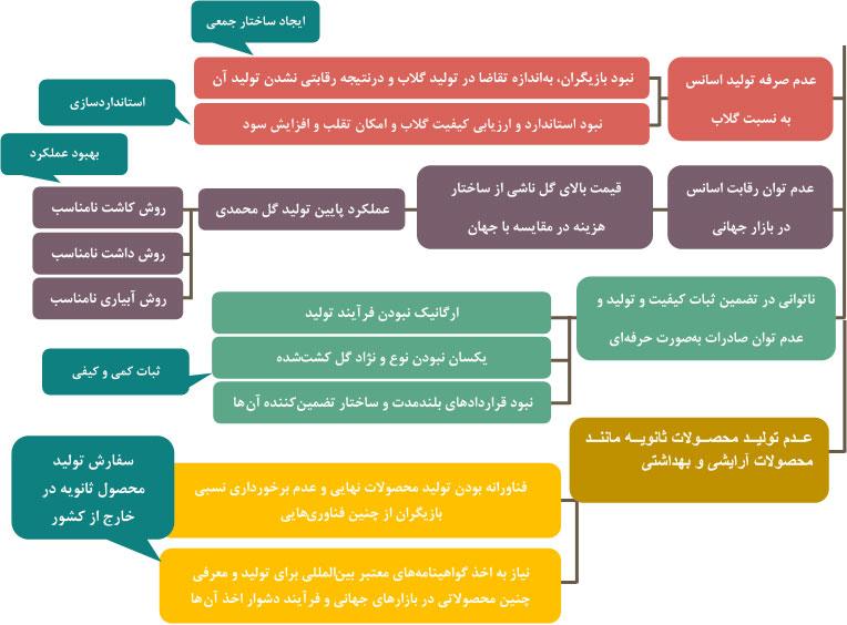 شکل 6 سیاستهای توسعه زنجیره گل محمدی برای رقابت با شرکتهای خارجی